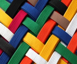 ProKick's next grading is set for Sunday 28th May 2017. This grading is for our ProKick Adults going for Yellow & Orange Belts.