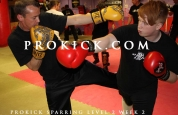 combinations punches and kicks