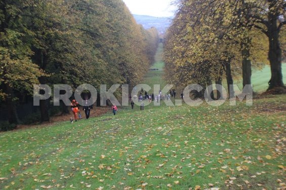 Hill runs at Stormont