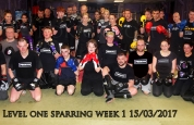 ProKick Sparring class March 15th 2017